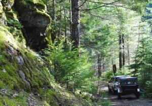 Dinoot Jeep Trailers ssf6_HR