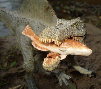 https://i2.wp.com/www.dinosaur-toys-collectors-guide.com/images/Papo-Spino-fishBr2.jpg