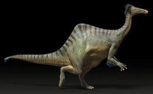 beer bellied dinosaur