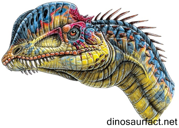 Image result for dilophosaurus