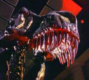 Machoire Tyrannosaure