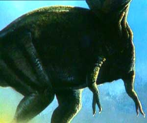 Bras Tyrannosaurus