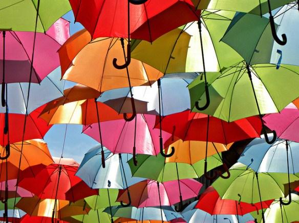Cubierta de paraguas 1