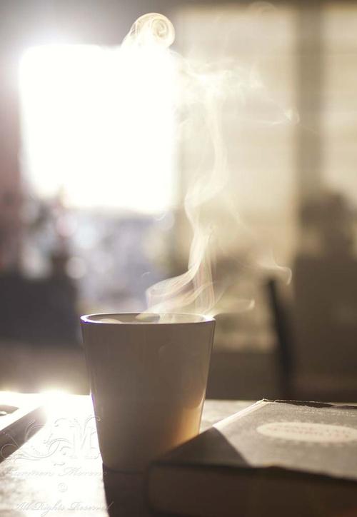 desayuno9