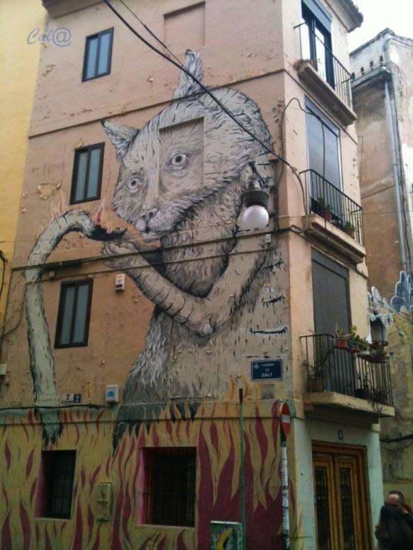 grafiti gato