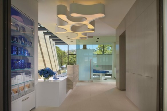 The Obagi Skin Health Institute by Horst Architects 10