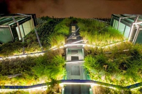 Jardin vertical 10