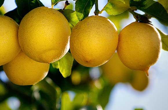 aromas de limones