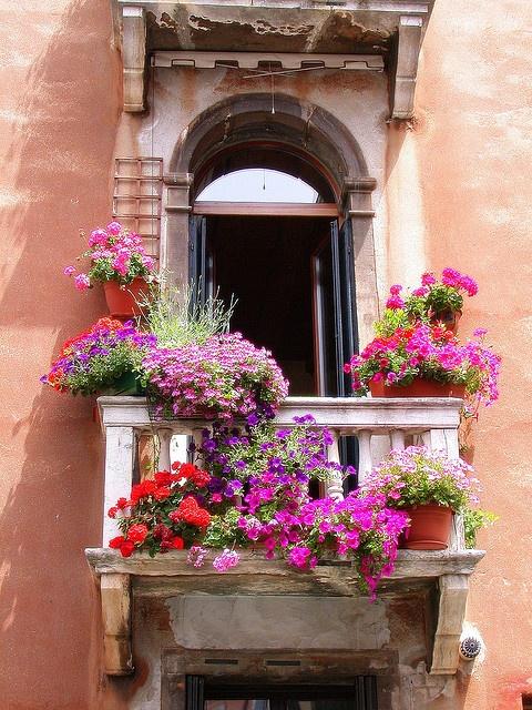 primavera balcon flores