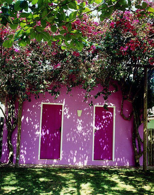 primavera puertas rosa