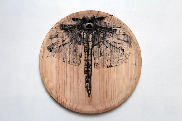 raul del sol cuerpo insecto