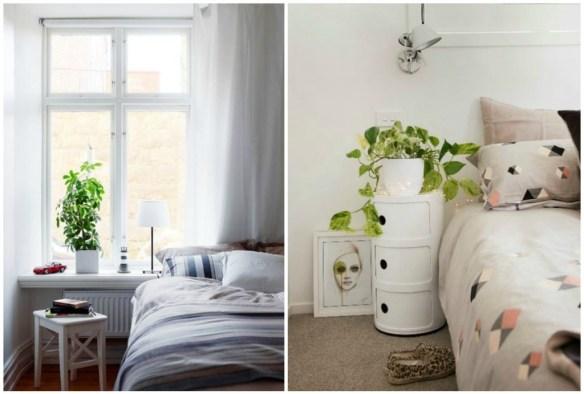 06-dormitorio-romantico-plantas