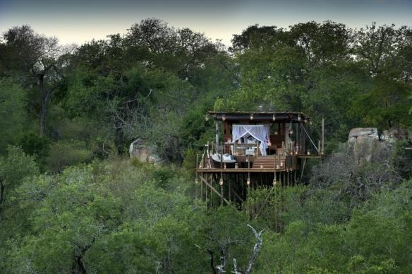 Treehouses de Lion Sands 2