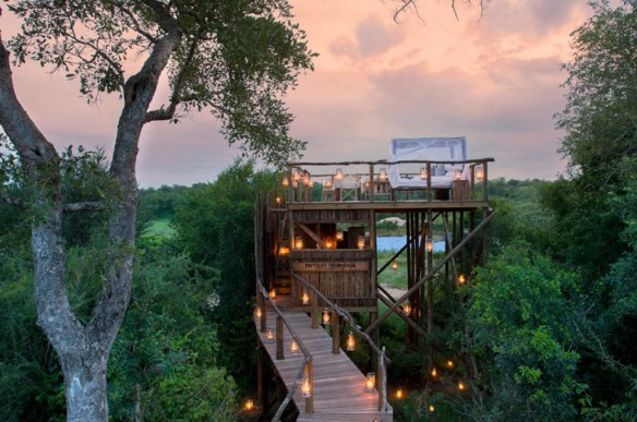 Treehouses de Lion Sands 6