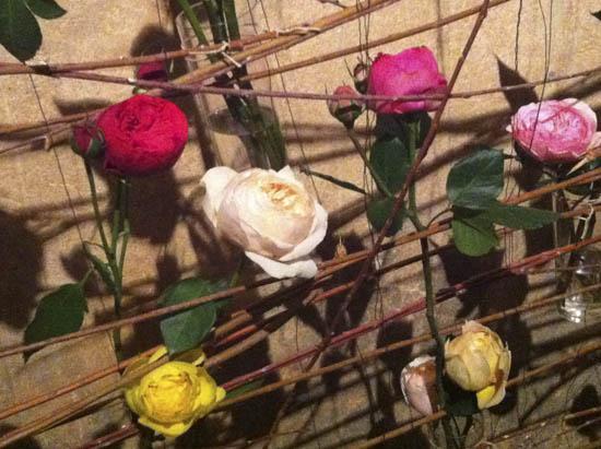 rosas y piedras - Girona temps de flors 2013