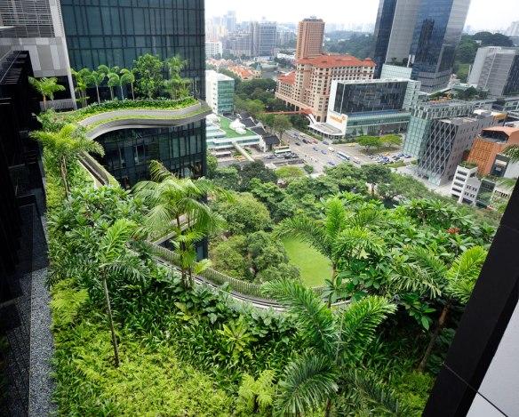 jardines_aereos_hotel2