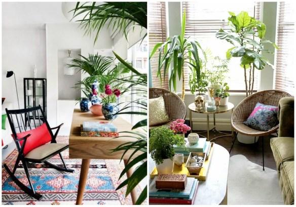 01-estilo-tropical-plantas