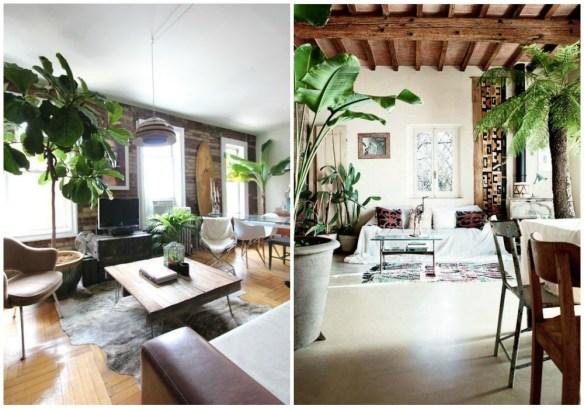 04-estilo-tropical-plantas-xl