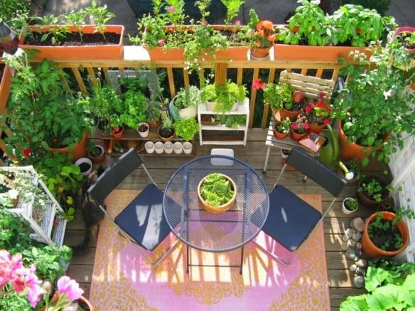 Jardin en el balcon 4