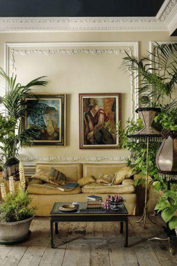 plantas naturales en decoración