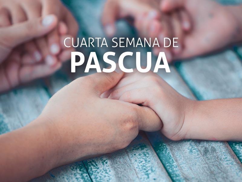 Evangelio de la IV semana de pascua