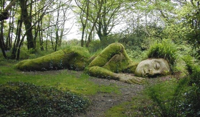 photo: heligan gardens