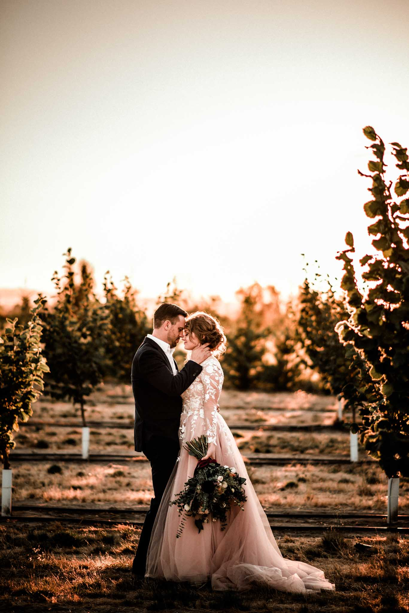 Wedding couple embracing during sunset outdoor in a vineyard at Green Villa Barn in Independence Oregon