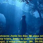 Las Horas oscuras del Getsemaní