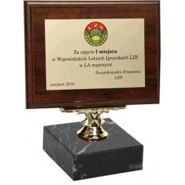 Statulėlė Medinis diplomas STA-0010