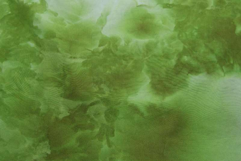 Snow Dyed Green Broadcloth #2