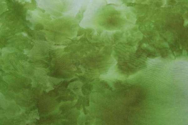 Snowdyed green broadcloth