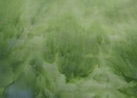 Green Snow dyed stretch sateen
