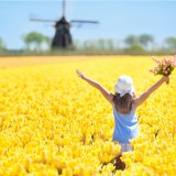 The top 3 Dutch holiday destinations, according to you!