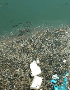 El plástico constituye el 10% de todos los residuos que generamos.