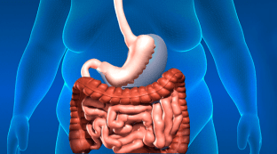 Especialistas en aparato digestivo.