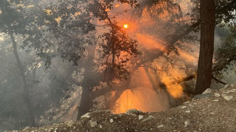 The sun breaks through the smoky atmosphere in the Angeles National Forest during the Bobcat Fire on Sept. 27, 2020. (Photo courtesy of Angeles National Forest)
