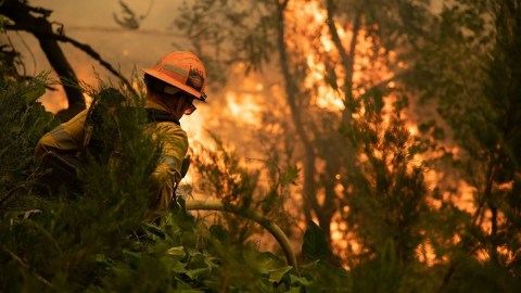 A firefighter works to quell the flames of the El Dorado Fire burning in California's San Bernardino mountains on Sept. 10, 2020. (Photo courtesy of San Bernardino County Fire Department)