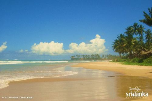 5 Top Reasons To Visit Sri Lanka 4