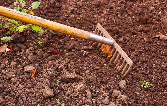 Esonero contributivo 2018, istituzione codice per i lavoratori agricoli