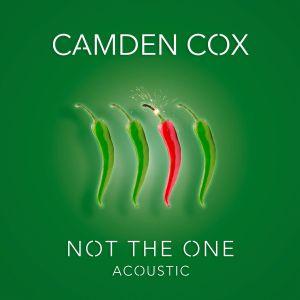 remixes: Camden Cox - Not The One