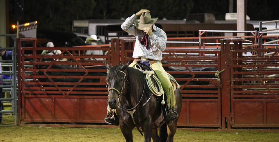 cowboy-849498_1920