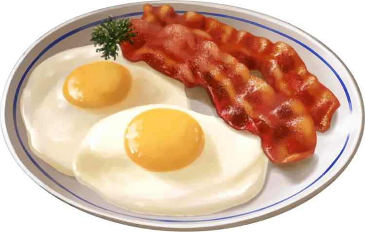 Bacon and Egg Diet