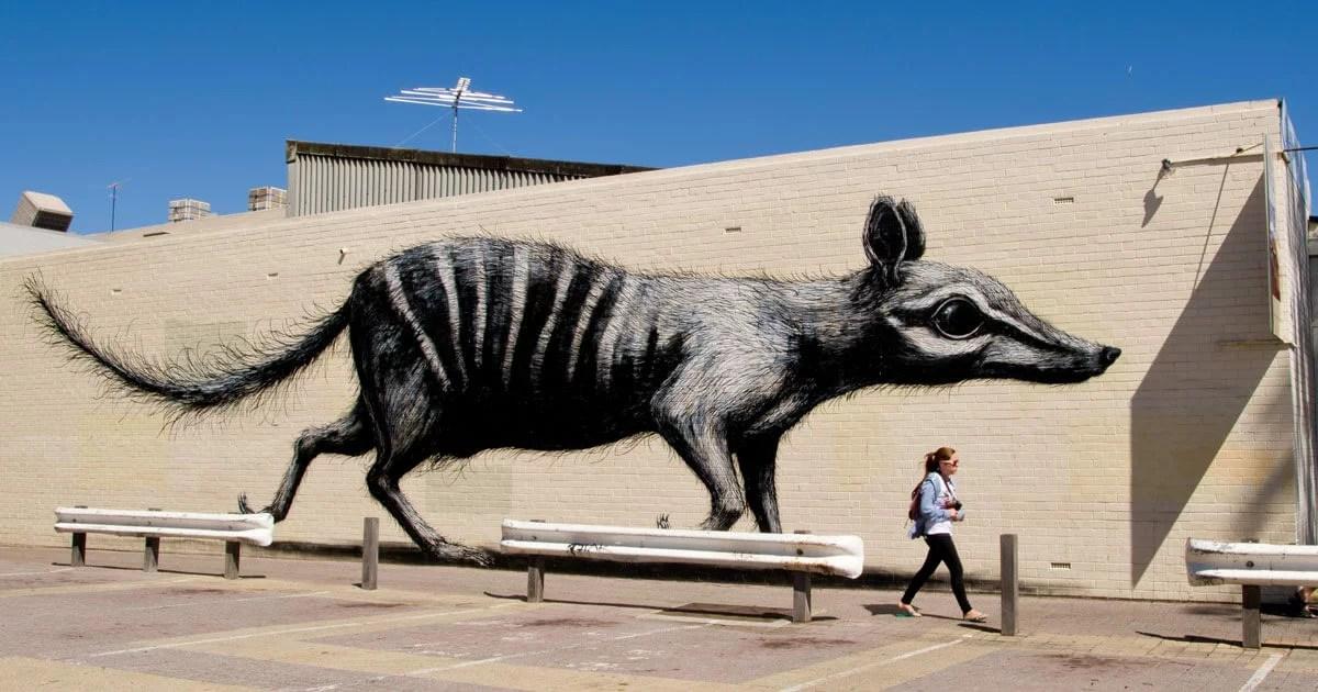 ROA-Street-Art-Copertina