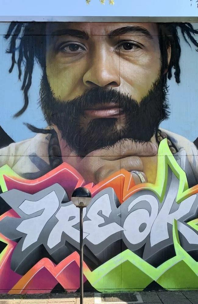 Freak Street Art Trezzano Sul Naviglio