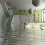 … ripristinare dopo alluvioni o infiltrazioni