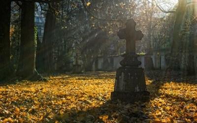 Affidamento del servizio di pulizia e manutenzione del verde dei cimiteri comunali- Regione Toscana