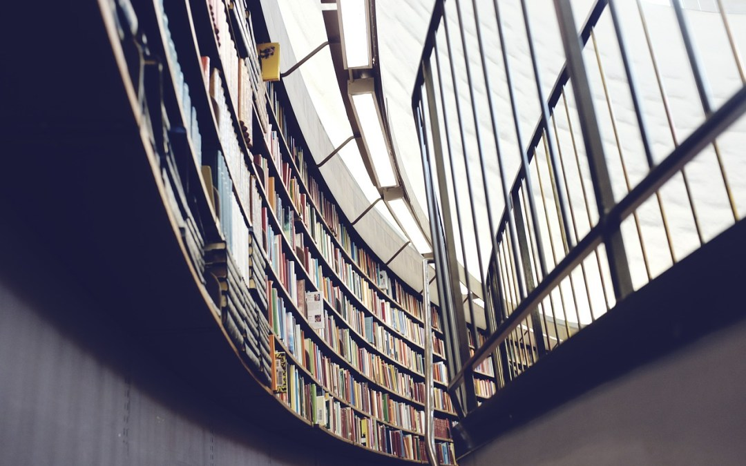 scuola libri libreria immobile
