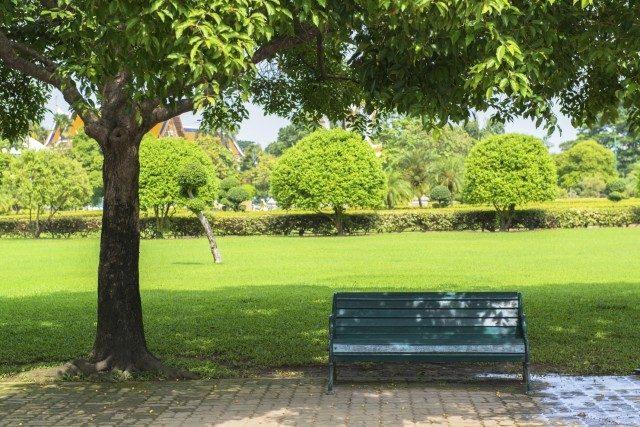 Lavori di realizzazione e relativa manutenzione del parco pubblico – Lombardia