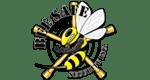 Bee Safe Security Inc