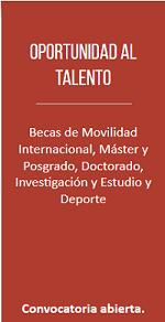 cartel de becas oportunidad al talento